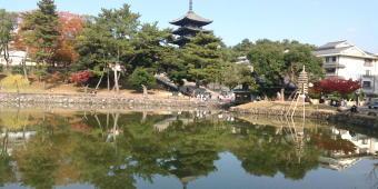 332-340猿沢の池.jpg