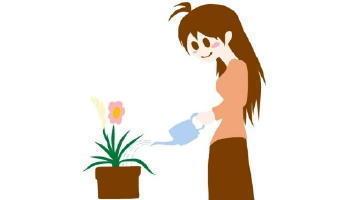 5361-340花と水.jpg