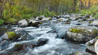 5411-340川の流れ.jpg