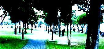 一期一会41(公園)-340.jpg