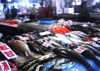 一期一会62(魚市場2)-340.jpg
