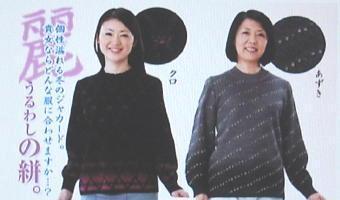 日本文化センタUD2セータ-340.jpg