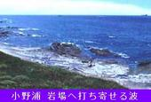 K3小野浦(岩場)-170.jpg