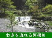 K3榊野温泉すずめ(阿川)-170.JPG