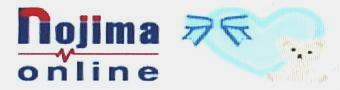 nojima online1紹介-340.jpg