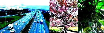 2高速道路-340.jpg